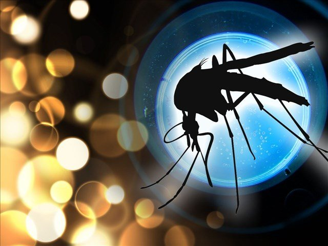 County Reports This Year's First Find Of West Nile Virus