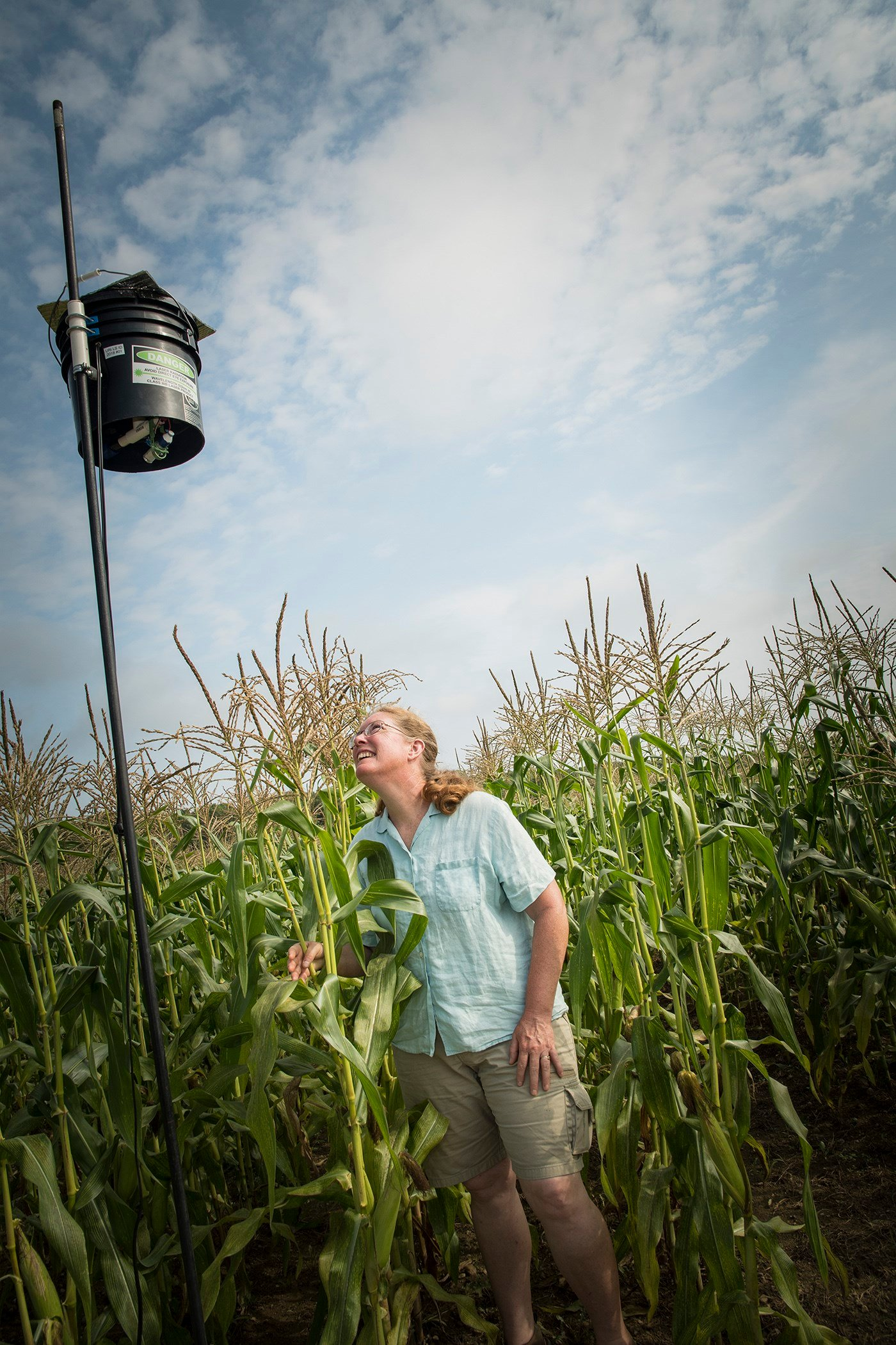 URI researcher develops laser scarecrow to help reduce birds eating farm crop